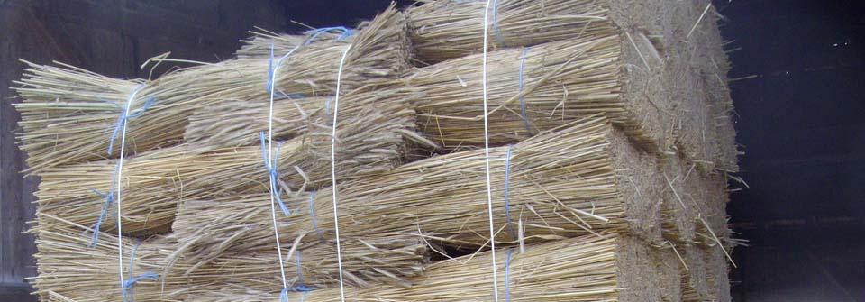 Acheter chaume pour toiture